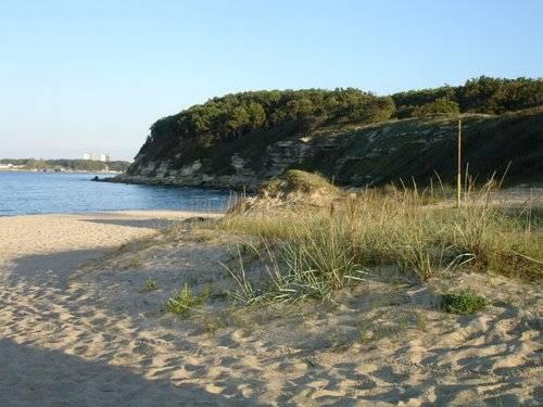 Beach MMC