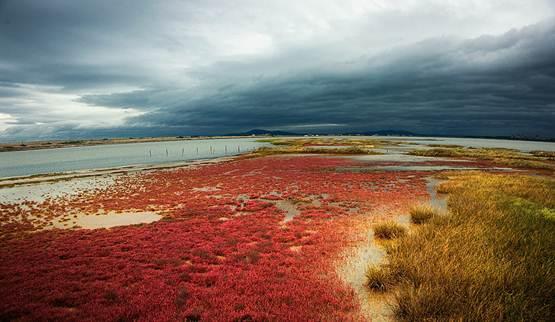 Jezioro Atanasowskie