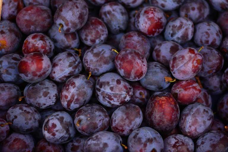 Bulgarian plums