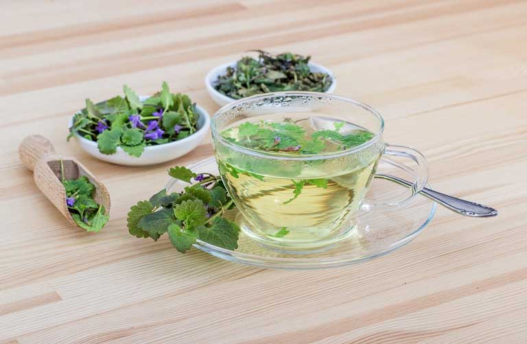Herbs and tea immunostimulants