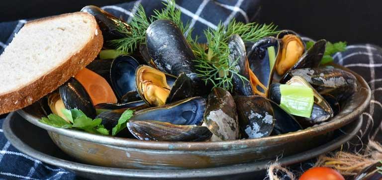 Shellfish as immunostimulants