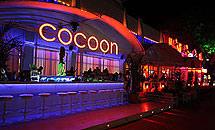 Cocoon Bar - Sunny Beach
